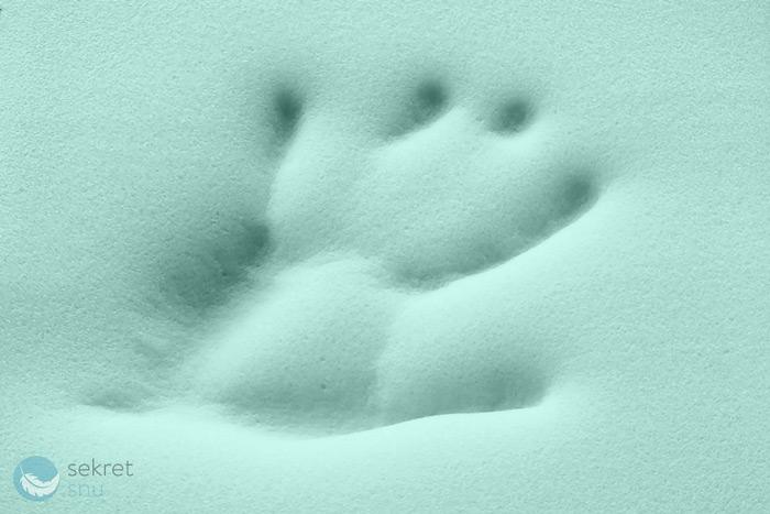 Odbita dłoń na piance termoelastycznej VISCOGREEN